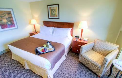 Holiday Inn Tampa Westshore Airport bedroom