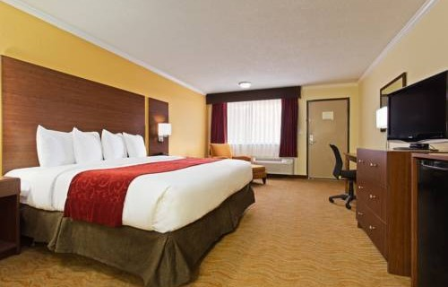 Ramada Westshore Tampa Airport bedroom 2
